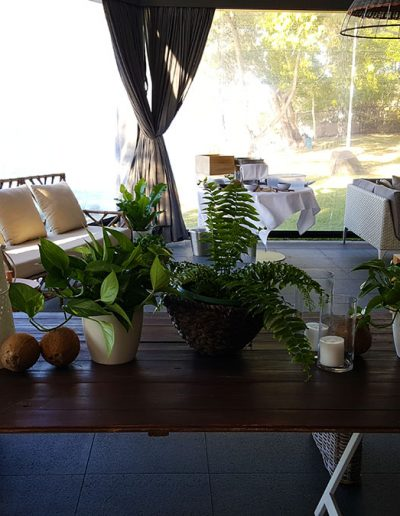 event-plant-hire-sunshine-coast-02