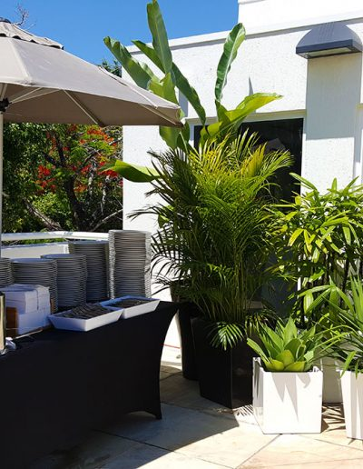 event-plant-hire-sunshine-coast-03