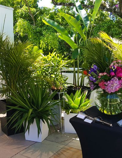 event-plant-hire-sunshine-coast-04