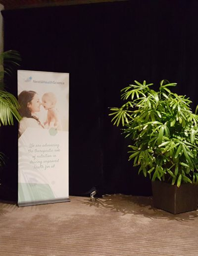 event-plant-hire-sunshine-coast-13