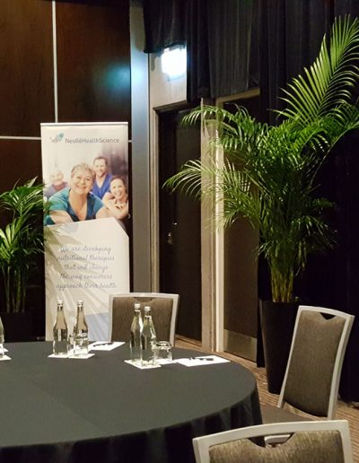 event-plant-hire-sunshine-coast-14