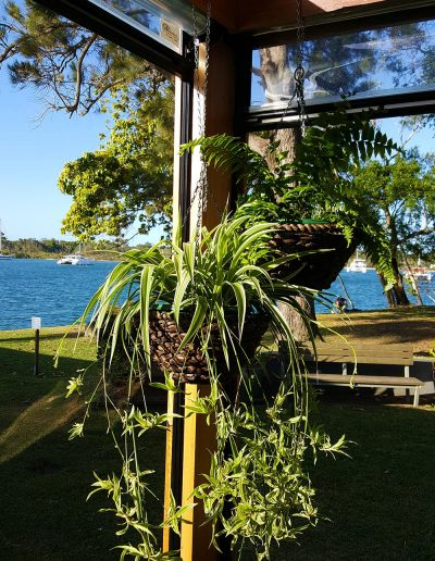 event-plant-hire-sunshine-coast-20