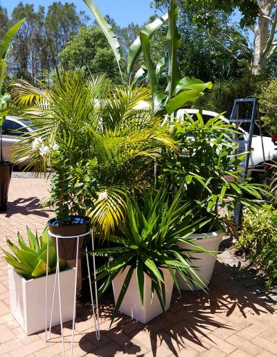 event-plant-hire-sunshine-coast-21