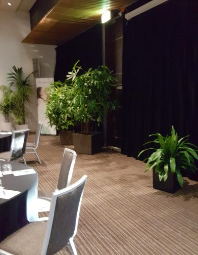 event-plant-hire-sunshine-coast-28