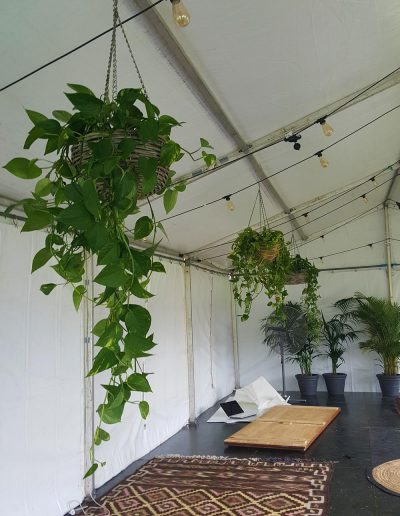 event-plant-hire-sunshine-coast-38
