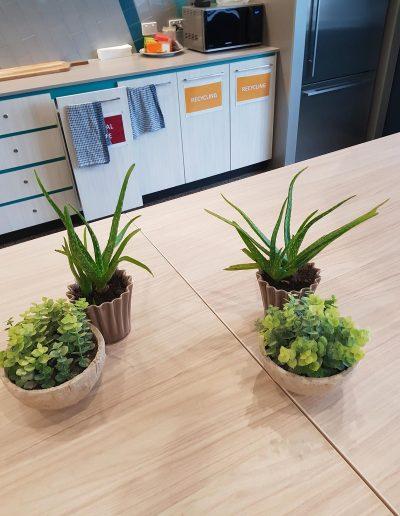office-plant-hire-sunshine-coast-05
