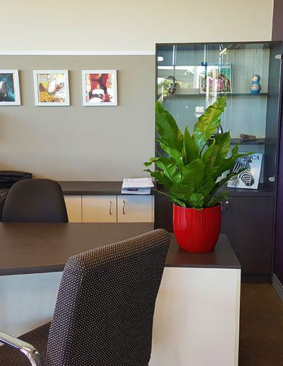 office-plant-hire-sunshine-coast-71
