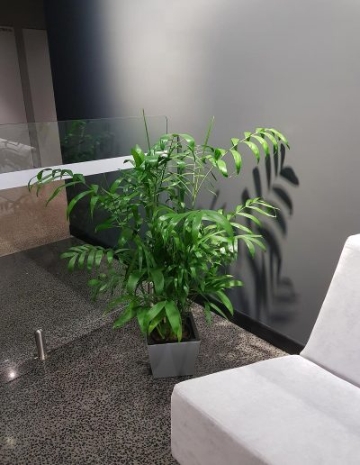 office-plant-hire-sunshine-coast-92