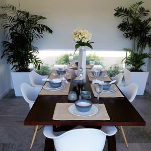 plants-for-hire-display-homes