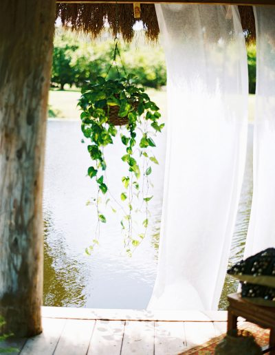 wedding-plant-hire-sunshine-coast-48