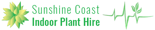 Sunshine Coast Indoor Plant Hire